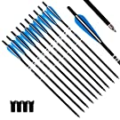 "Tiger Archery 20inch Hunting Archery Carbon Arrow Crossbow Bolts with 4"" vanes Feather and Replaced Arrowhead/Tip(Pack of 12) …"