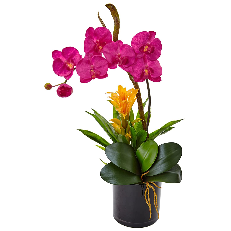 ほぼ自然Orchid and BromeliadシルクArrangement、ダークピンク B073V9DHW1