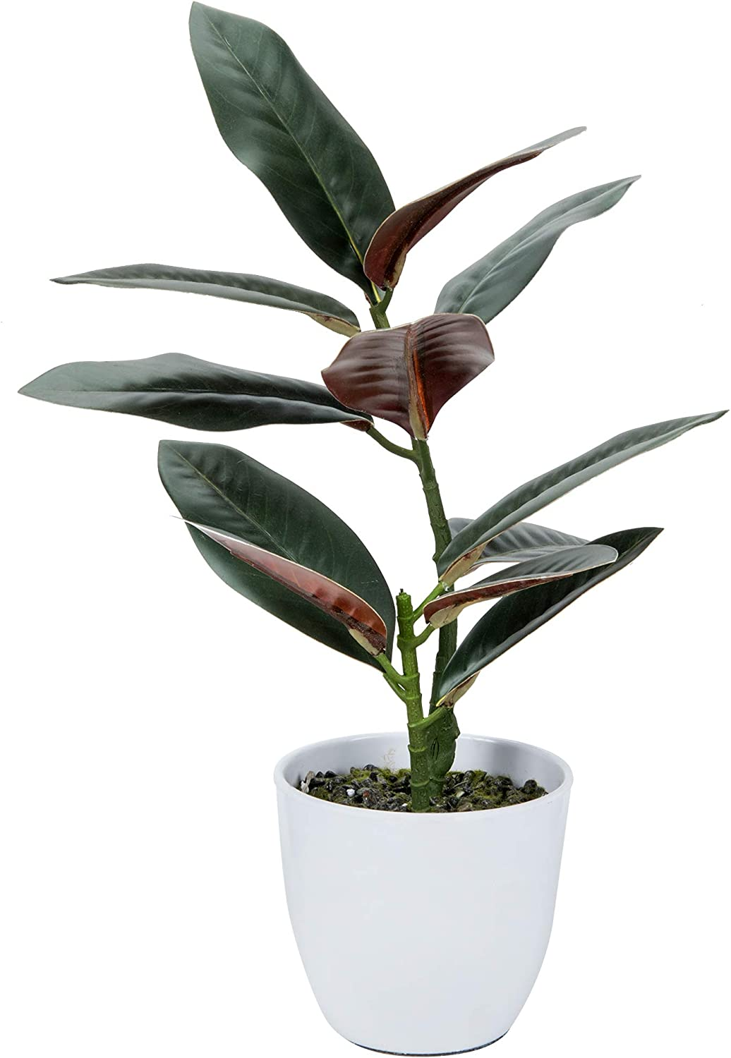 Seedless Natural Artificial Plant for Home Decor - Decorative Green Realistic Fake Plant for Desk - Fake Rubber Fig 19 inches in Pot