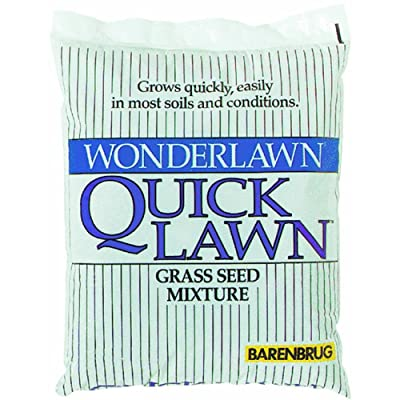 Barenbrug USA 70210 Quick Lawn Grass Seed : Grass Plants : Garden & Outdoor