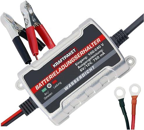 Dino Kraftpaket 136303 750mah 6v 12v Erhaltungsladegerät Batterieladegerät Ip65 Für Kfz Auto Motorrard Quad Atv Boot Auto