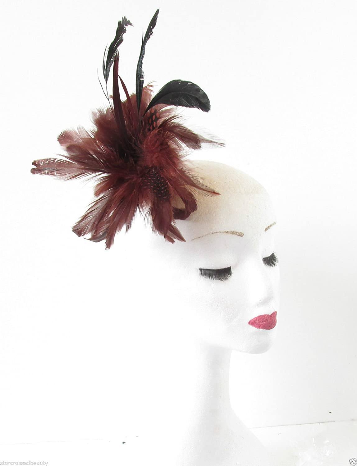 f78d89fdd Red Brown Black Feather Fascinator Hair Clip Brooch Burgundy Native  American Q09 *EXCLUSIVELY SOLD BY STARCROSSED BEAUTY*: Amazon.co.uk: Beauty