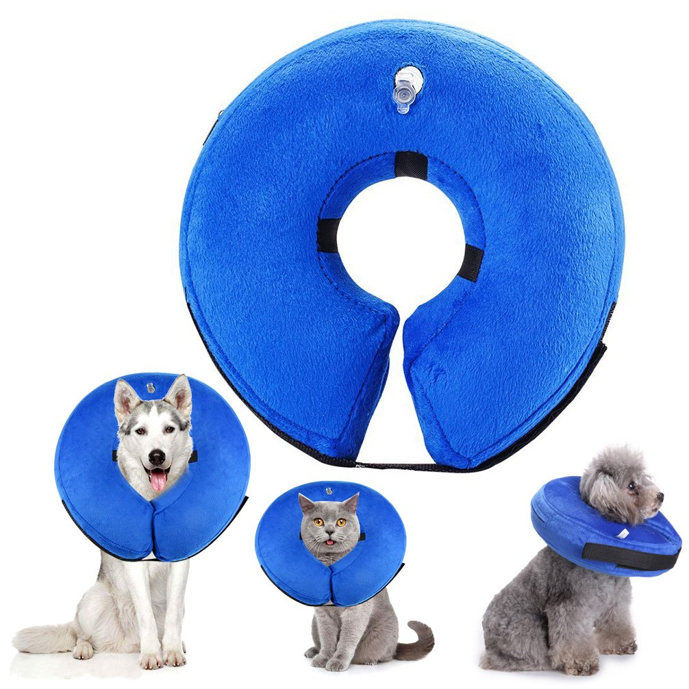 SMALLLEE_LUCKY_STORE MQ00016-blue-L Inflatable Dog Recovery Collar, Blue, Large by SMALLLEE_LUCKY_STORE
