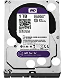 WD Purple 1TB Surveillance  Hard Disk Drive - Intellipower SATA 6 Gb/s 64MB Cache 3.5 Inch
