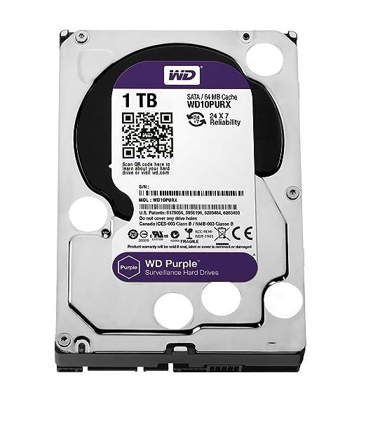 278 opinioni per Western Digital WD Purple HDD Interno 1000 GB, SATA III, 6000 Mbit/s, 5400 rpm,