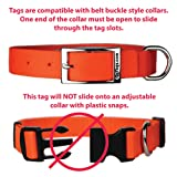 GoTags Pet ID Personalized Slide-On Collar