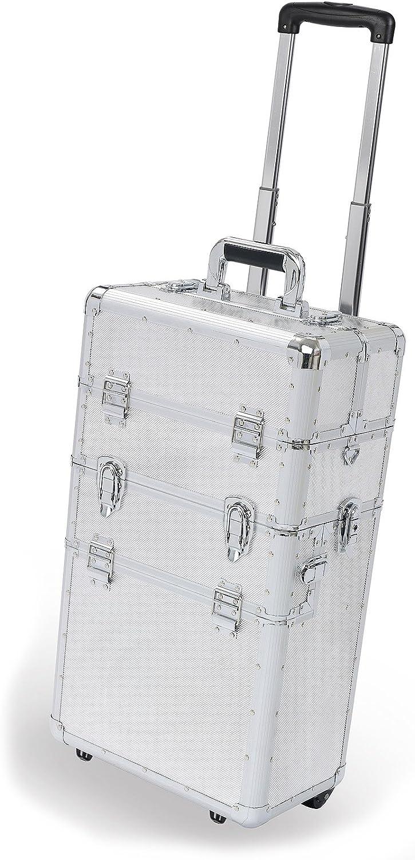 Juego 2 maletas alum c/trolley (PRM10113T)