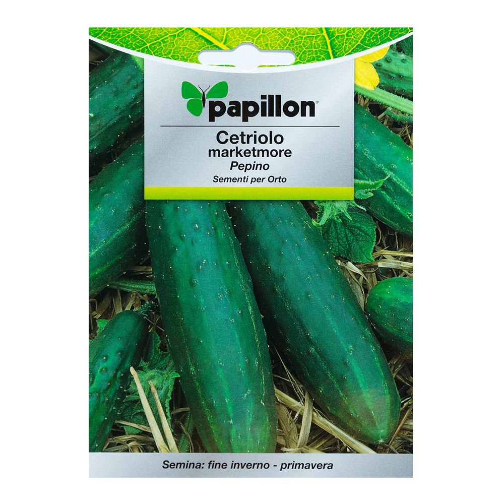 Semillas Pepino Marketmore (5 Gramos): Amazon.es: Bricolaje y ...