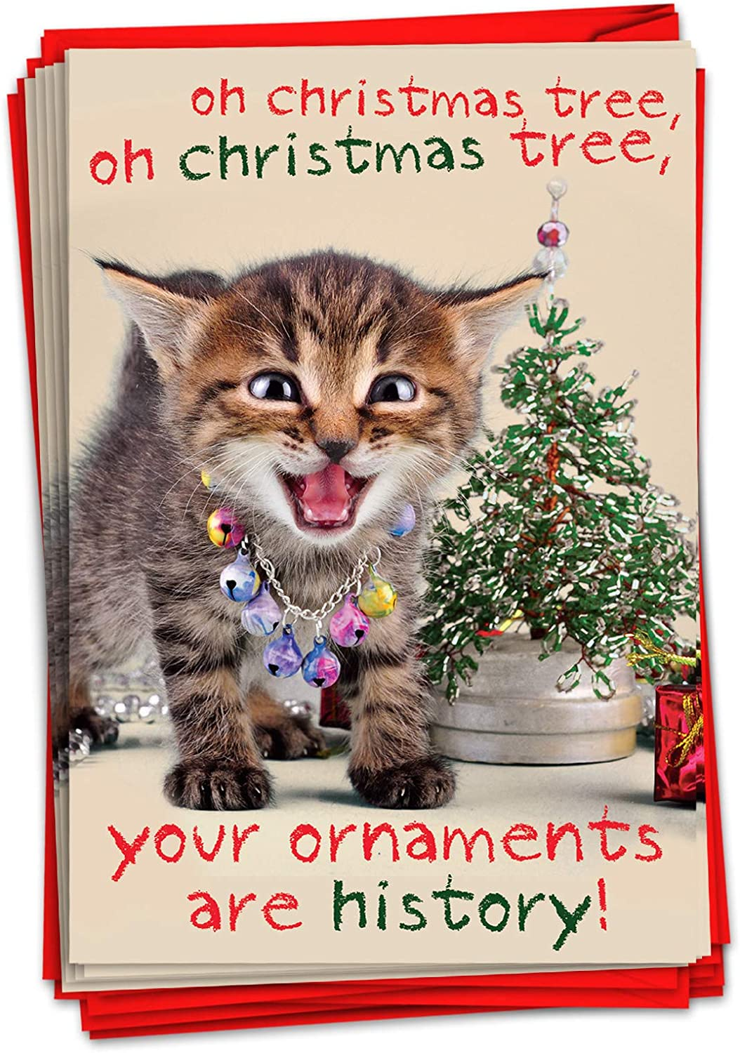 Amazon 12 Funny Cat Christmas Cards with Envelopes - Pet  Animal Holiday Humor