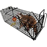 "Professional Humane Live Animal Trap 28""X12""X12"" Catch Release Cage for Large Nuisance Rodents Control Raccoon Mole Gopher Opossum Skunk Groundhog Squirrel Spay Feral Stray Cats Rescue Wild Rabbits"