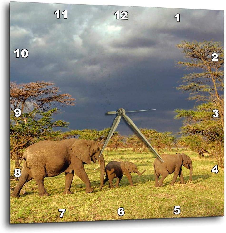 New sales 3dRose dpp_71689_1 African Elephant National Herd Serengeti Max 81% OFF Par