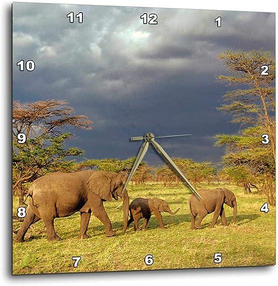 3dRose dpp_71689_1 African Elephant Herd