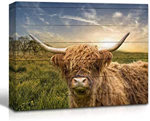 Wall Art Scottish Highland Cow on the Sunrise Grassland Vintage Country Wall Decor Canvas Size Farmhouse Kitchen Living room Wall Decoration (8x10inch Canvas Only)