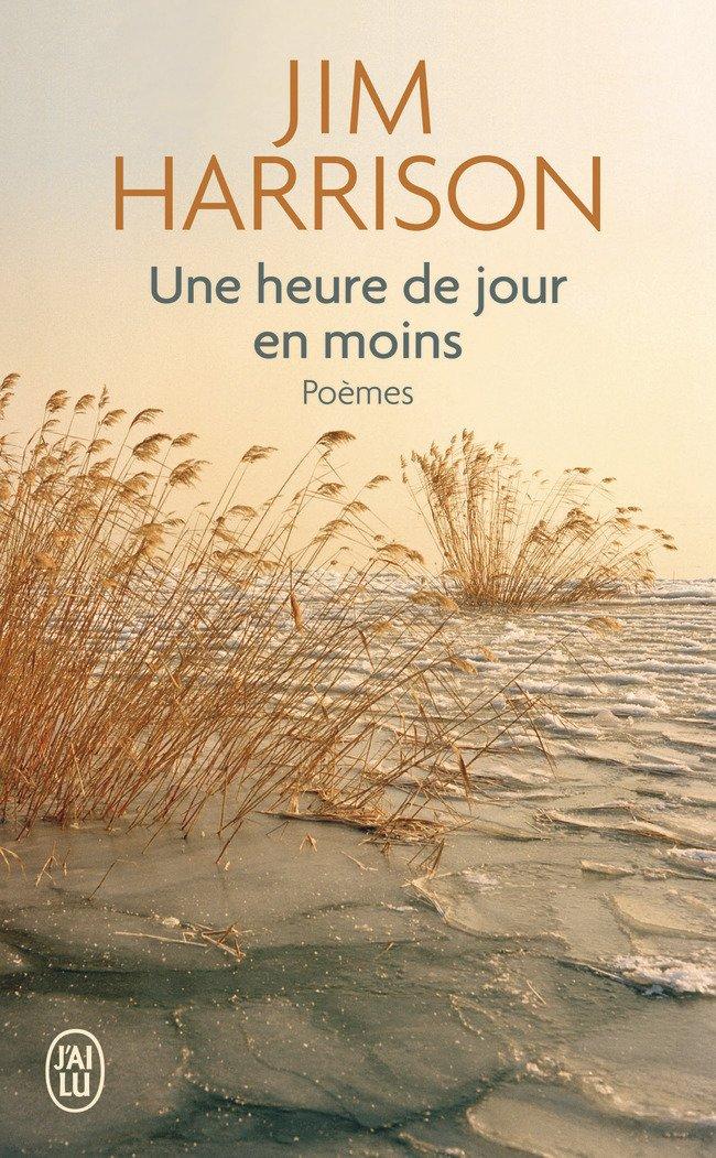 Une Heure De Jour En Moins Poemes Choisis 1965 2010