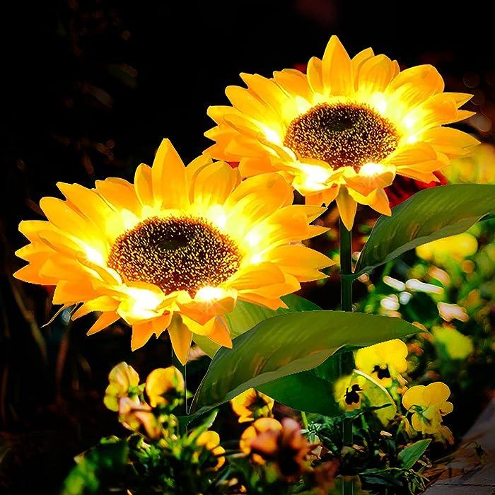 The Best Garden Solar Lights Decorative