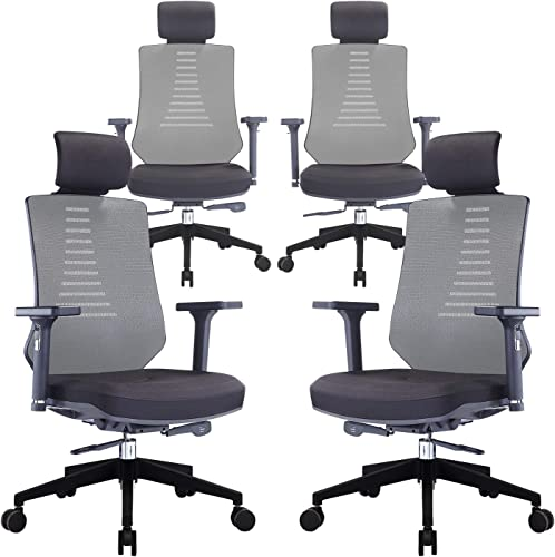 KLASIKA Ergonomic Office Chair