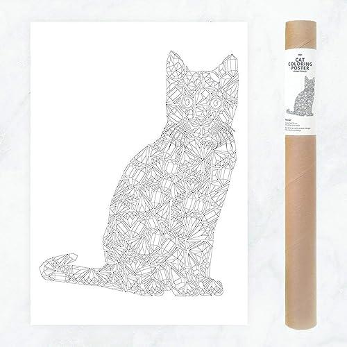 Piedras Preciosas Gigantes Gato Cartel de Color para la Señora Loca del Gato (Crazy Cat