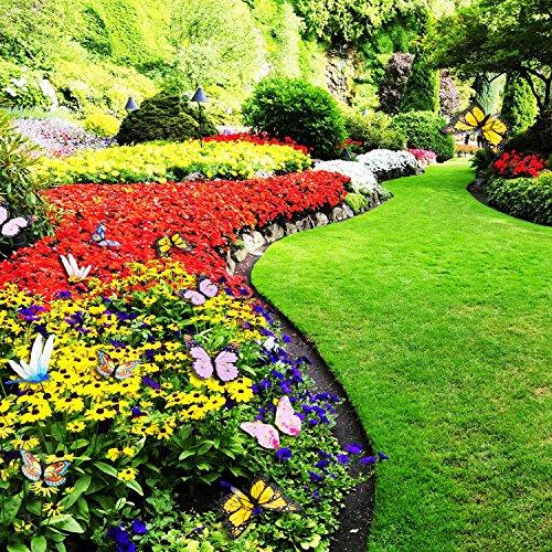 Estacas de Mariposas Libélulas de Jardín Adornos Decoraciones de Jardín Materiales de Fiesta, 24 Piezas en Total: Amazon.es: Jardín