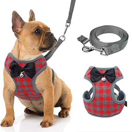 Abaooat Cat Harness and Leash for Walking Small Cat and Dog Harness Escape Proof Pet Vest Harnesses with Bell and Bow-Knot Decoration