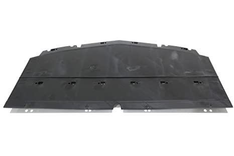 GM 23273619 deflector-frt BPR Fascia CTR aire