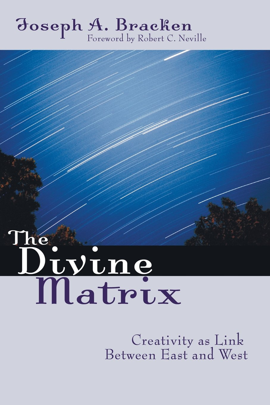 The Divine Matrix: Creativity As Link Between East and West pdf epub