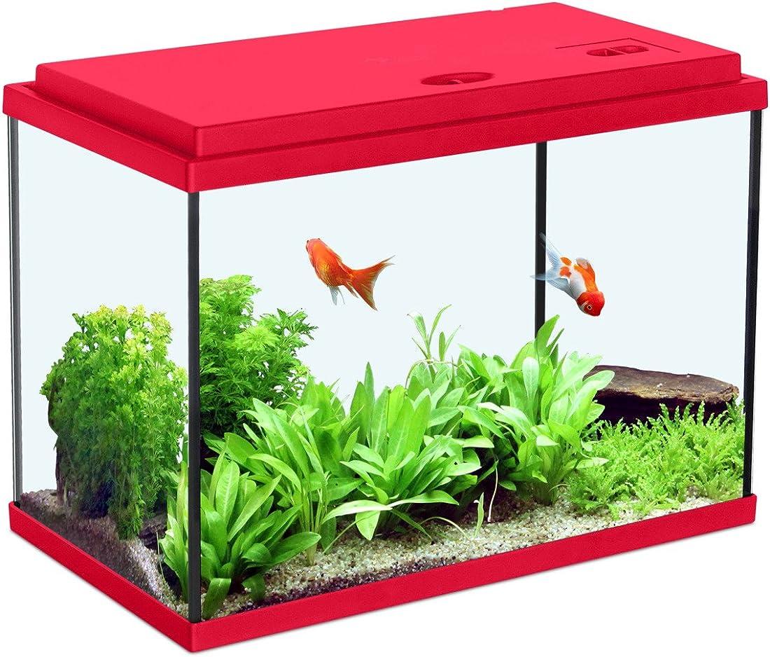 Acquario per pesce rosso nanolife kidz 40 rosso zolux 3336023070698