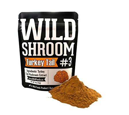 Turkey Tail Mushroom Extract Powder 10 1 by Wild Foods Fruiting Bodies Only, Hardwood, Triple Water Extracted, Vegan, Paleo Adaptogenic Herb, Immune Support, Gut Health, Mental Health Two 4 Ounce