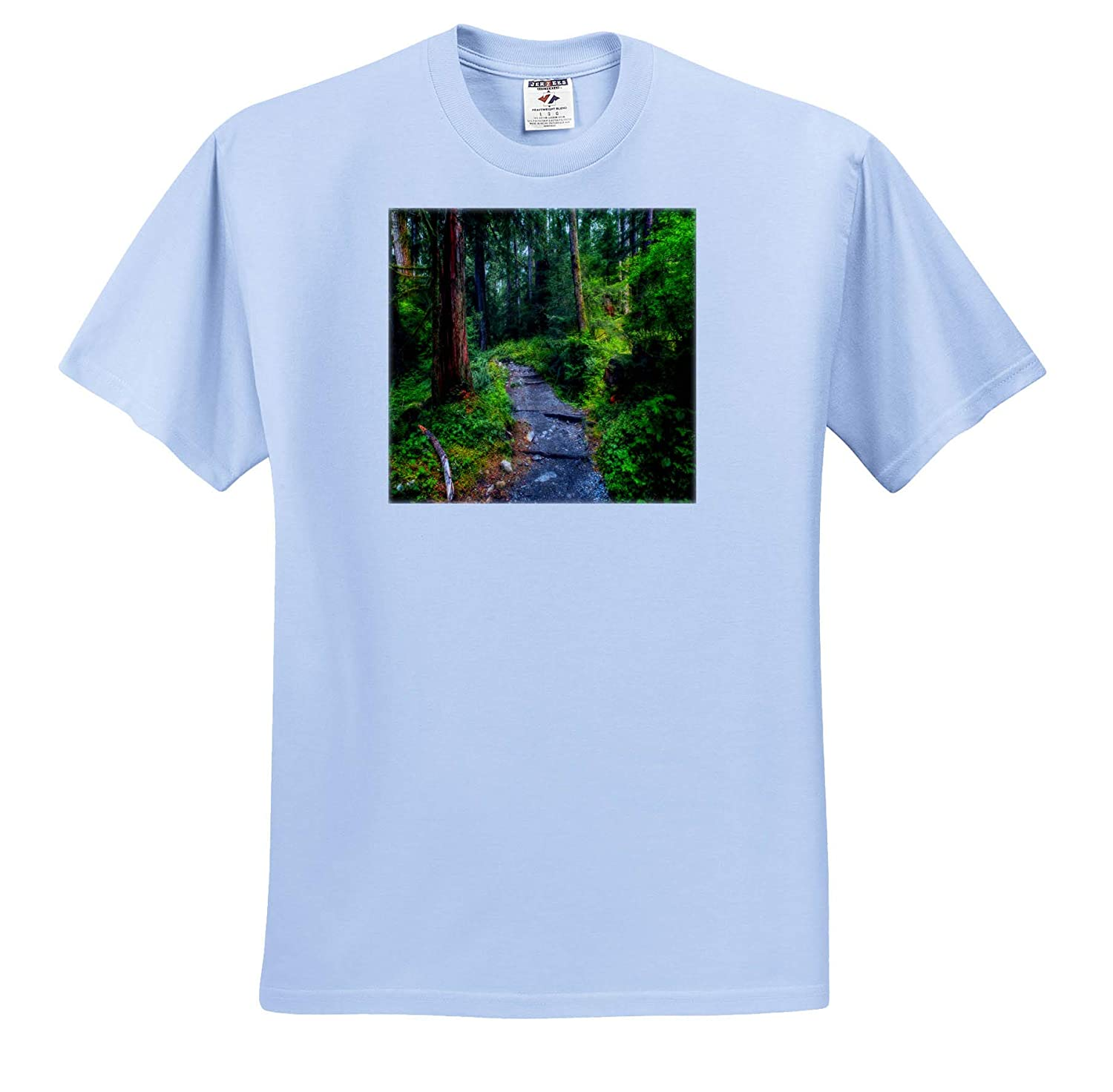 T-Shirts 3dRose Mike Swindle Photography Gravel Trail Through Sunny Forest Landscapes