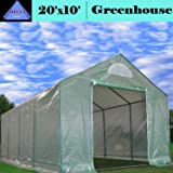 Greenhouse 20'x10' Triangle Top - Large Heavy Duty Green House Walk in Hothouse - 140 lbs By DELTA Canopies