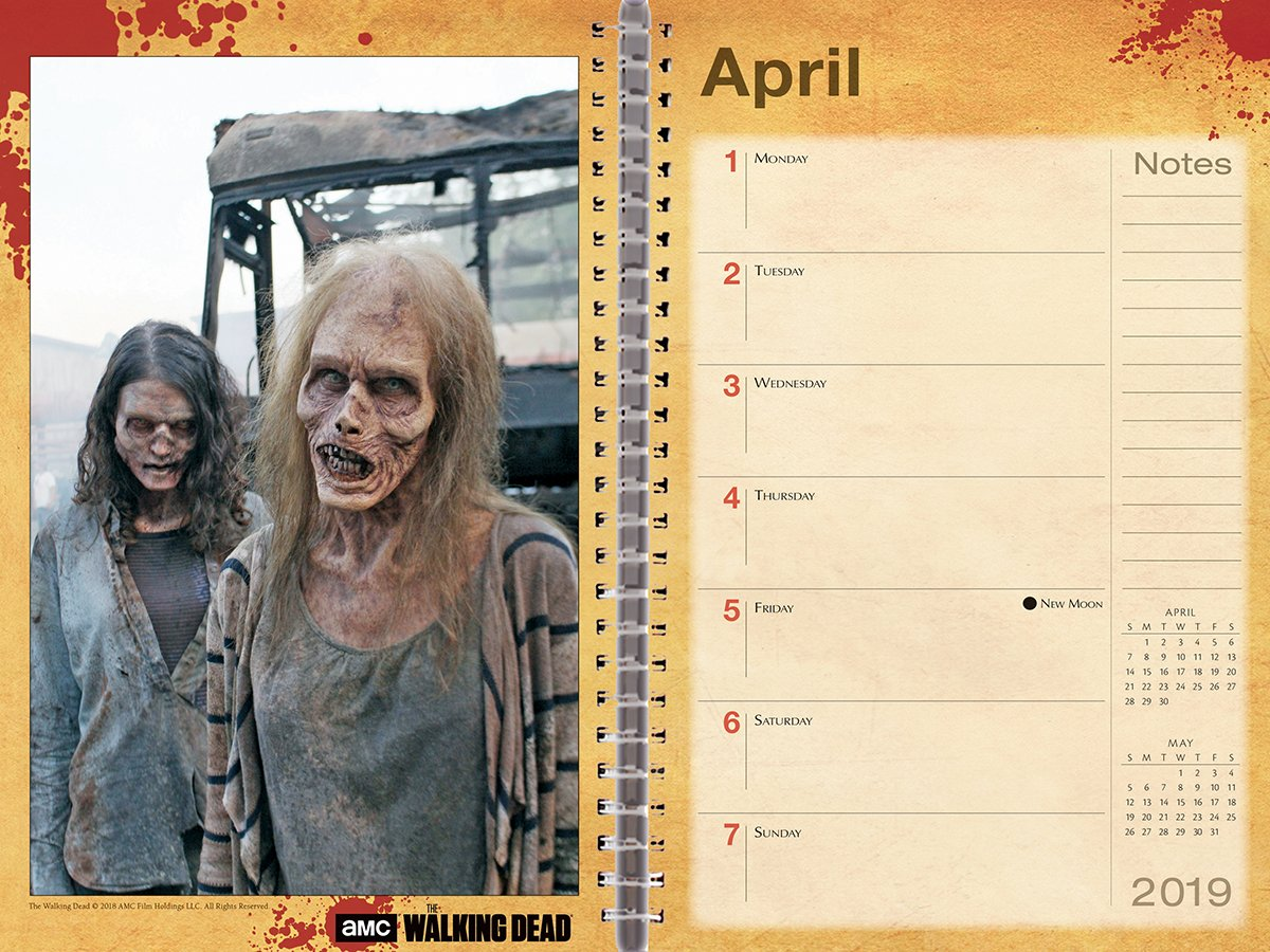 Walking Dead, the, Amc 2019 Diary: Amazon.es: AMC: Libros en ...