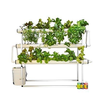 Future Farms Plastic Leaf Pyramid One Hydroponic System (46
