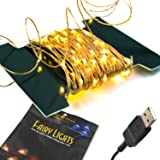 BrightTouch Mini LED String Lights - Powered by USB, Best Christmas Decorations, 100 Micro Lights, 33ft/10m (Warm White)