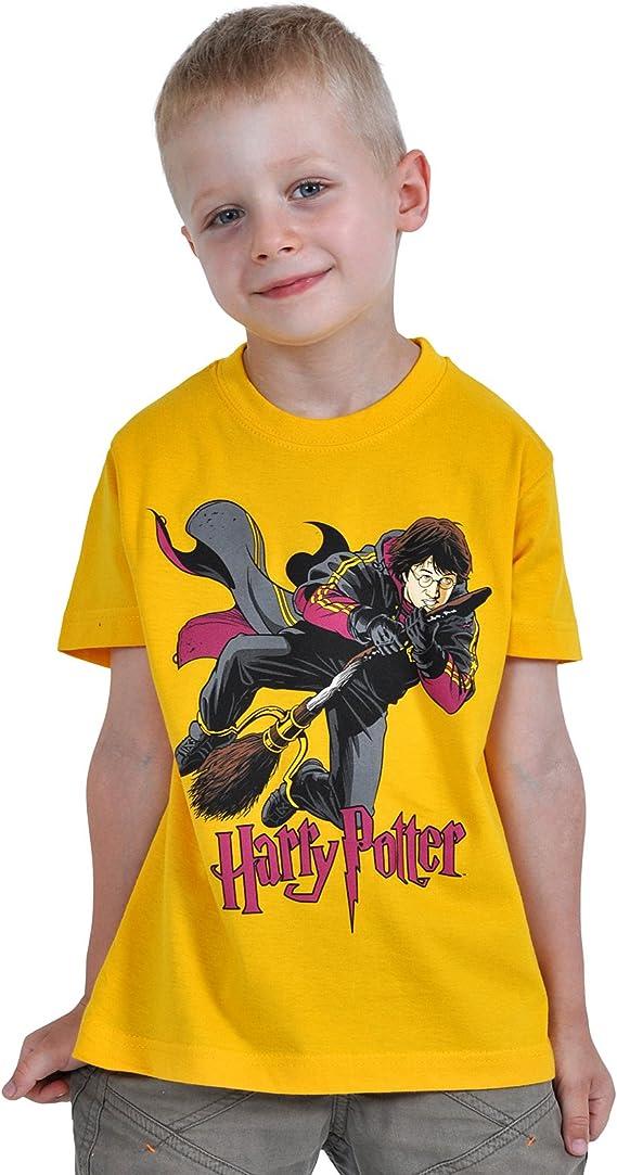 Harry Potter - camiseta infantil jugando al quidditch - con la licencia oficial - algodón resistente - amarilla - L: Amazon.es: Ropa y accesorios