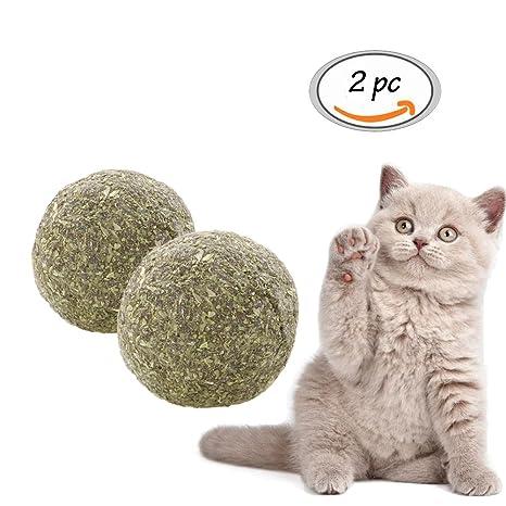 Toulifly Gato Menta, gato juguete, natural Catnip gato Menta Balls Cuidado Dental y juguetes