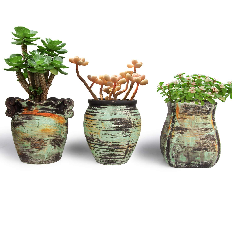 Macetas para Cactus de Ceramica