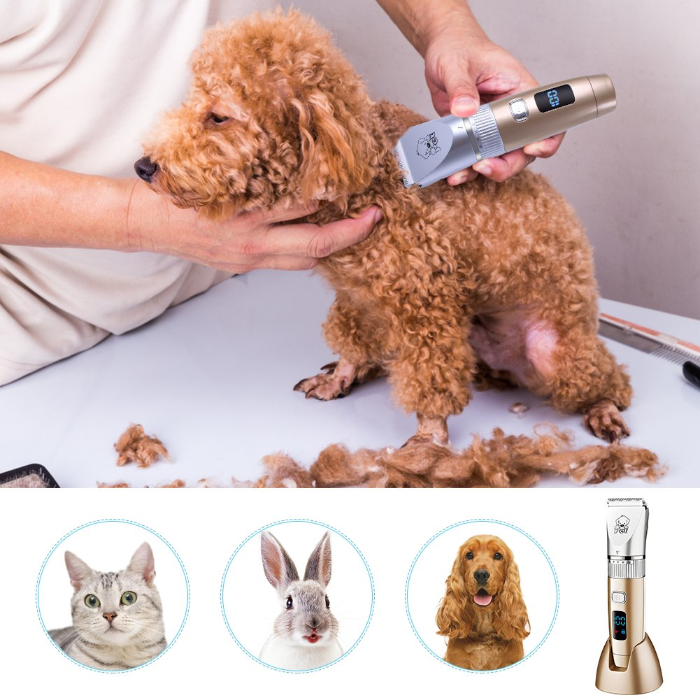 HATTEKER Dog Grooming Clippers Cordless Pet Hair Clippers Trimmer Waterproof Professional Grooming Kit Hair Clipper Set for Dogs Cats Pets Quite USB Rechargeable by HATTEKER (Image #3)