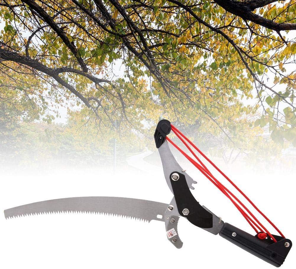 Cisailles d/élagage t/élescopiques /à Haute Altitude Coupe darbres fruitiers /à Double Usage Outil de Jardinage /Élagage pour Jardin ou /élagage darbres MAGT Scie d/élagage