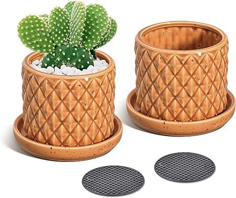 Vintage Succulent ceramic Planter white and yellow cactus orchid desktop planter pot