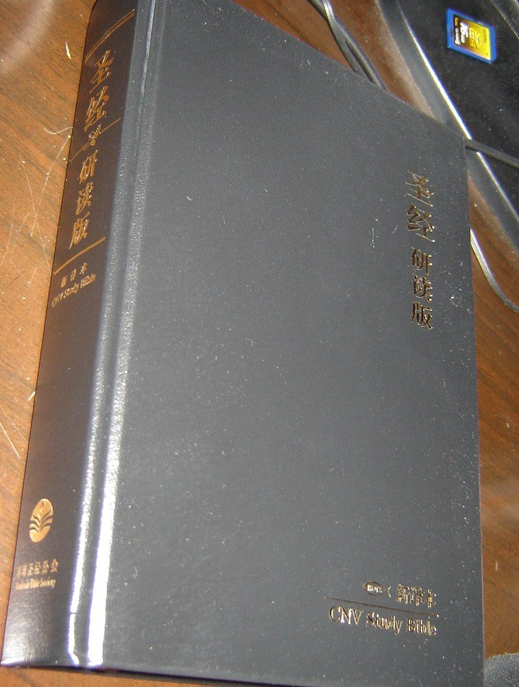 CNV Study Bible / Chinese New Version Study Bible / Simplified Character / Shen Edition / Large Size 170 X 240 mm / Black Hardcover pdf epub