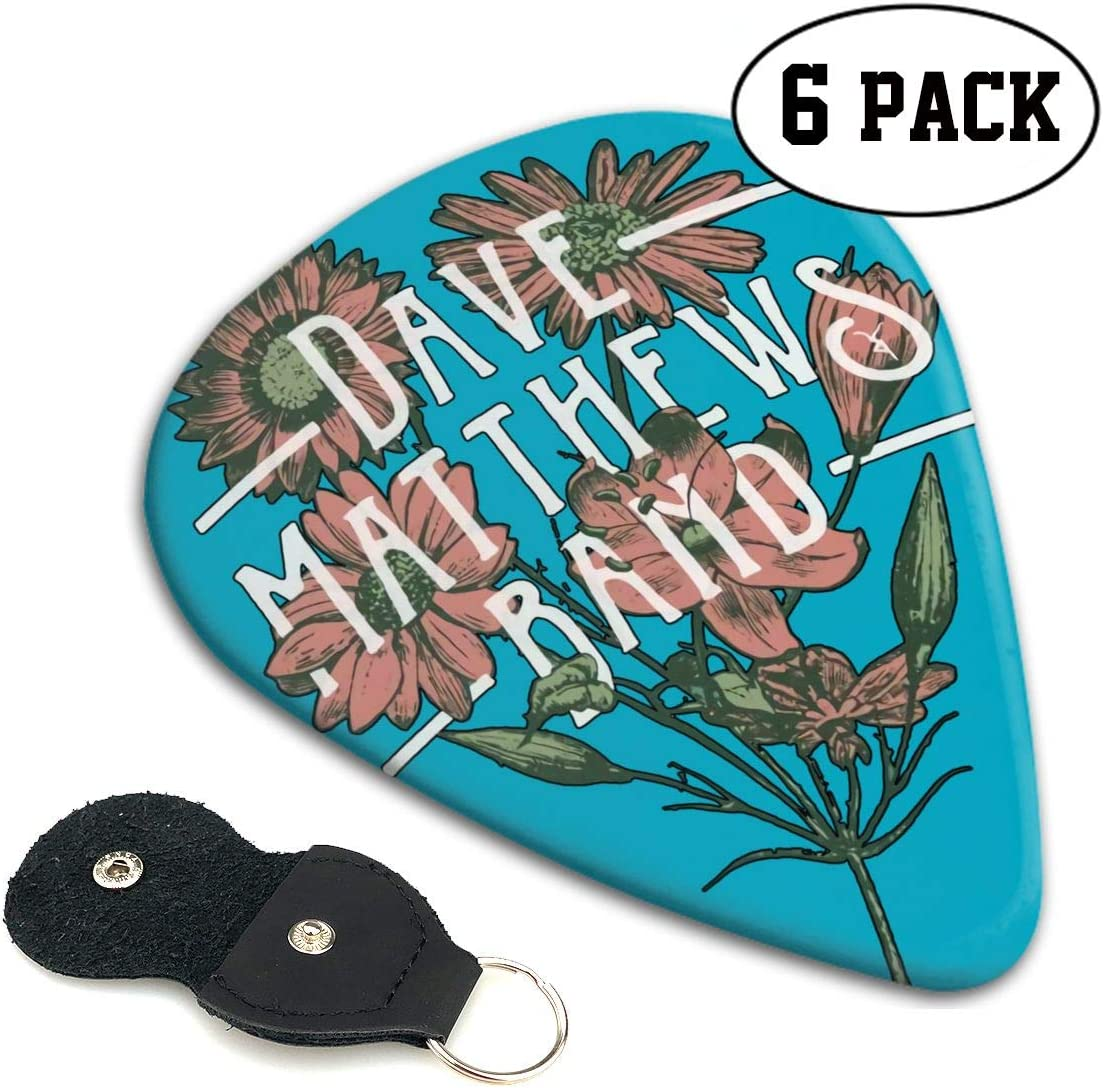 6 Pack with Pick Holder Hye D Riche Dave Matthews Band Logo Art ABS Music Rock Band Rock Guitar Pick .71mm
