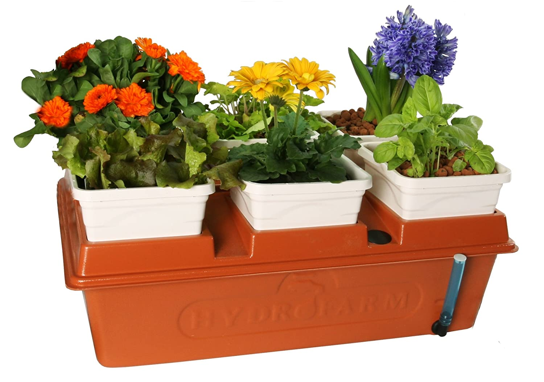 Hydroponic Kitchen Garden Amazoncom Hydrofarm Emsyst Emilys Garden System Lawn And