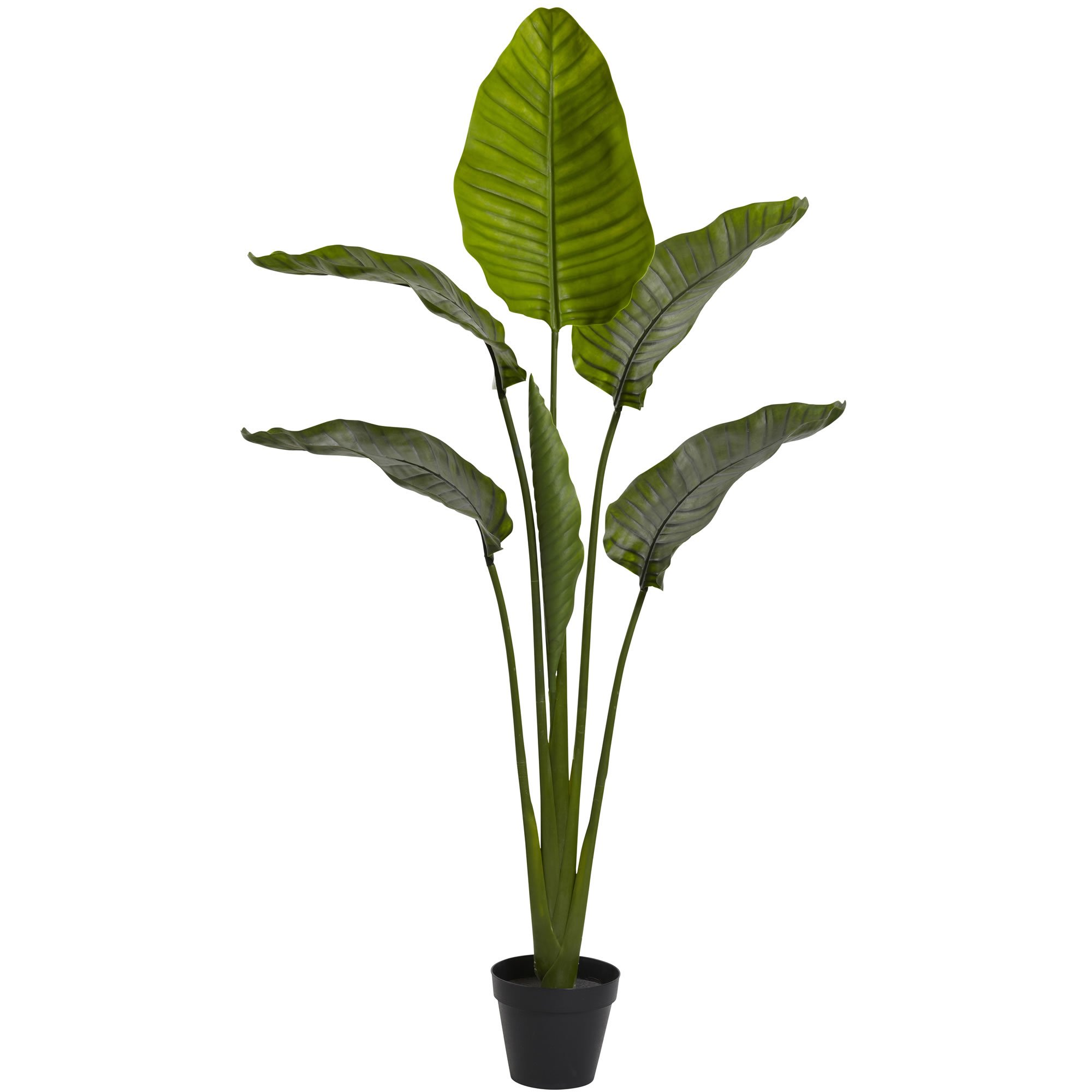 Nearly Natural Travelers Palm Indoor/Outdoor UV Resistant Tree, 64'' by Nearly Natural