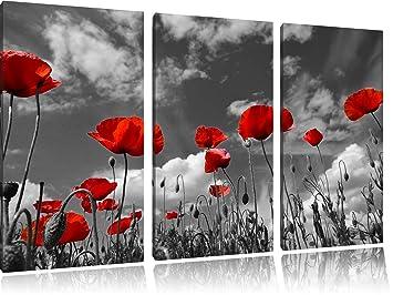 Blumen Rot Bild Bilder Leinwand Keilrahmen Wandbild Kunstdruck