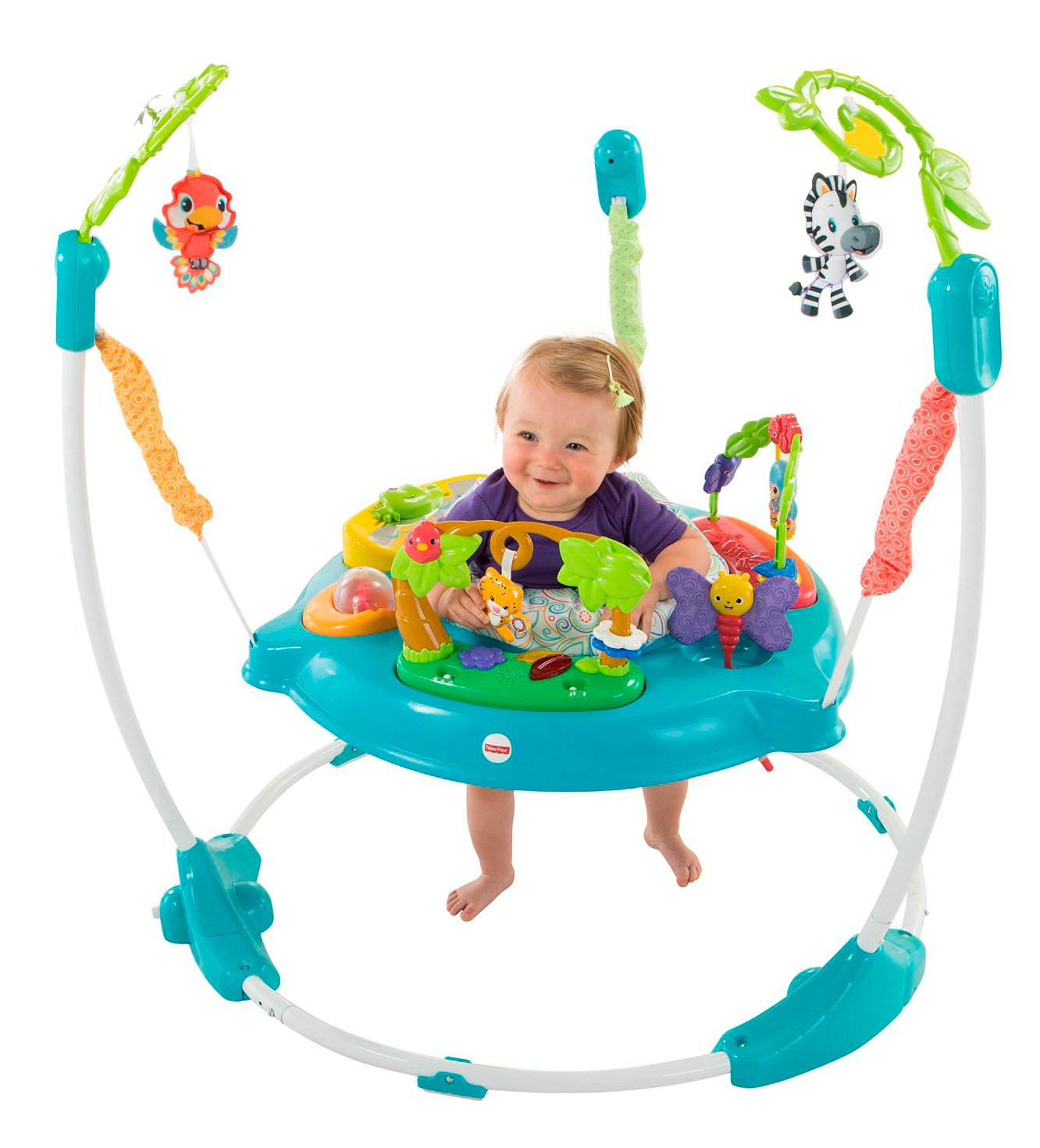Amazon.com : Fisher-Price Musical Friends Jumperoo : Baby