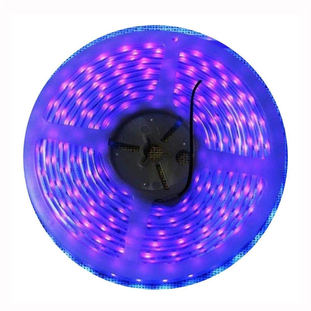 Super Waterproof 12V Black Lights UV Strip LED Blacklight Fixture, AMARS 5M/16.4FT 300 LED Purple Lighting for Boat, Outdoor, Black Lights Party, Fluorescent (Strip Only)