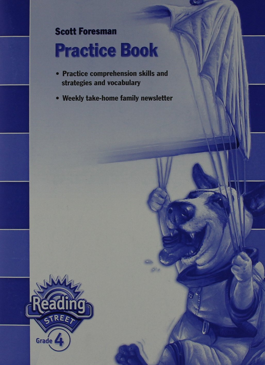 READING 2007 PRACTICE BOOK GRADE 4