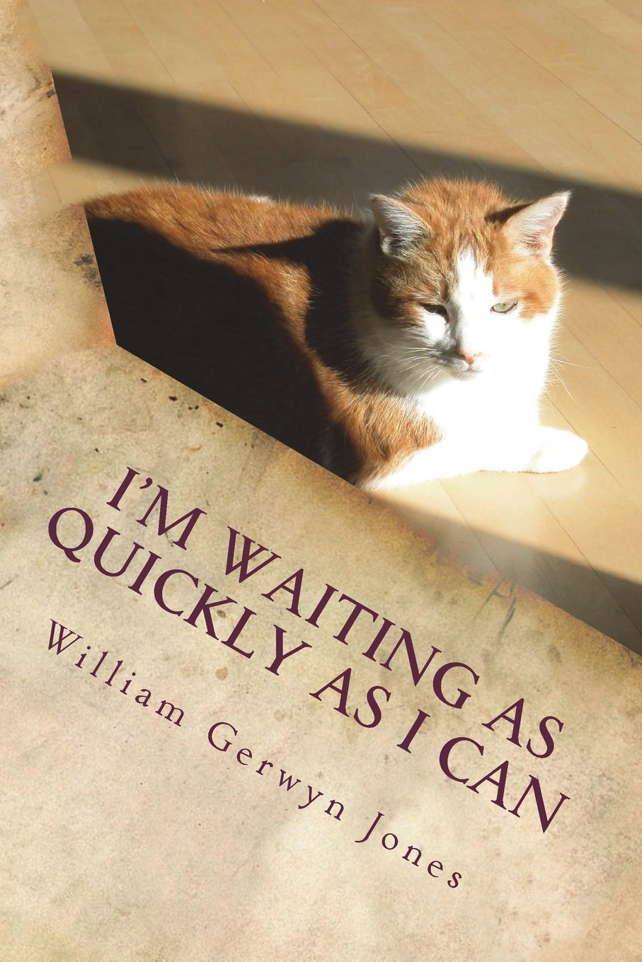 Download I'm Waiting as Quickly as I Can: Gentle Little Timebombs (Volume 1) PDF
