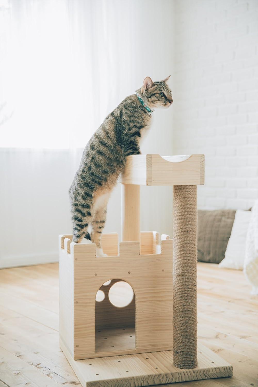 MICHA Dream Worker CGR-S002 Lego Concepto arañazos Árboles para gatos: Amazon.es: Productos para mascotas