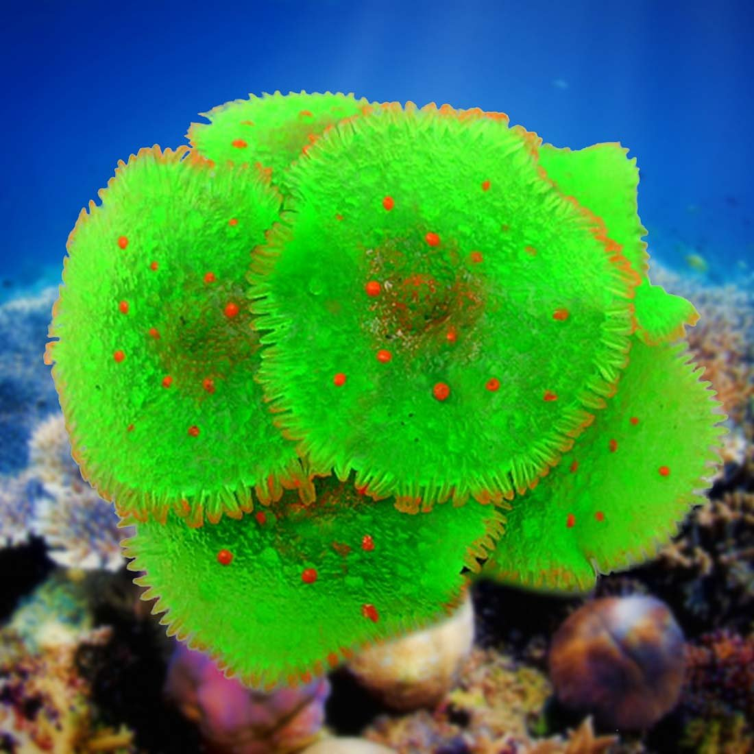 Joylive Aquarium Fish Tank Decoration Artificial Resin Coral Plant Underwater Ornament