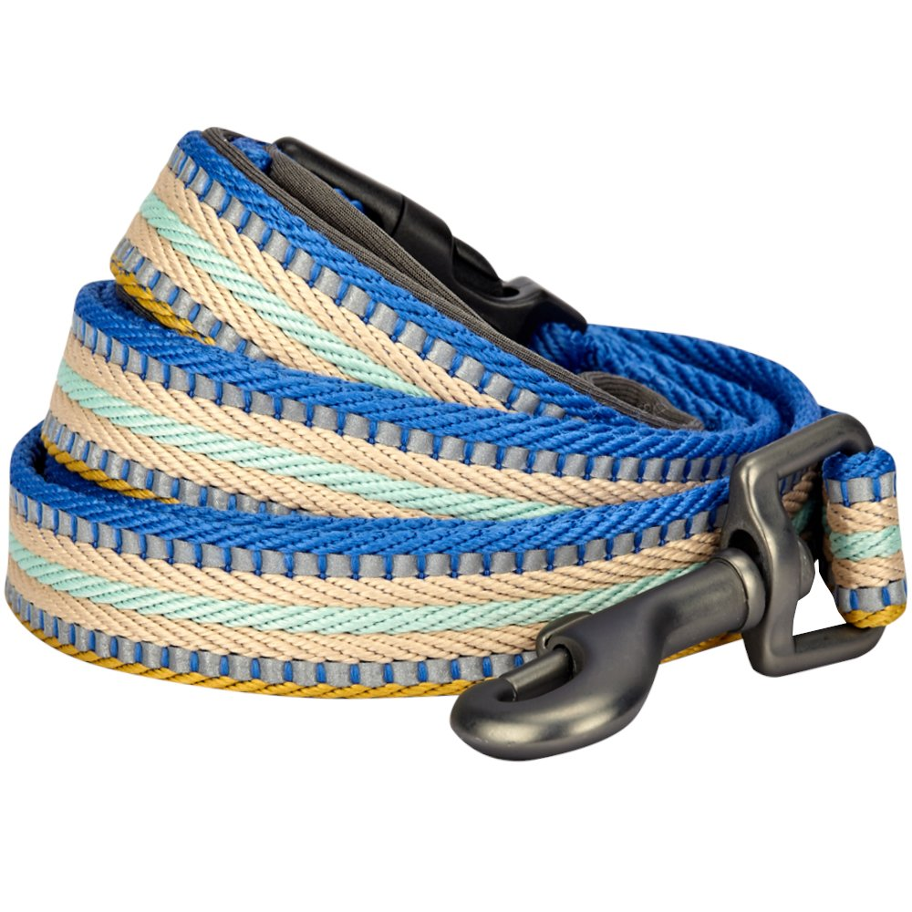 Blueberry Pet 8 Colors 3M Reflective Multi-Colored Stripe Dog Leash with Soft & Comfortable Handle, 5 ft x 5/8'', Ginger & Blue, Small, Leashes for Dogs